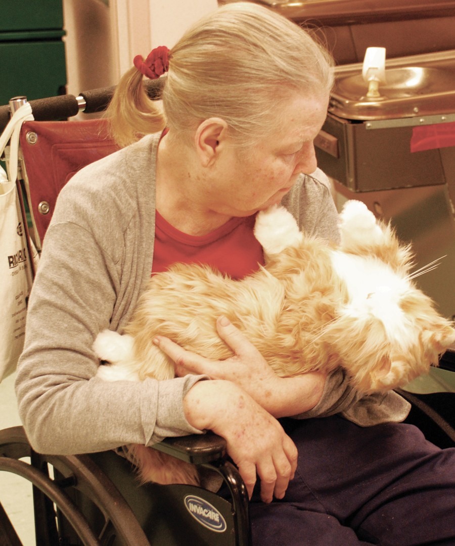 Menorah Manor's new cat therapy is 'purr'fect: No litterbox
